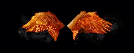 Swan Wings on Fire