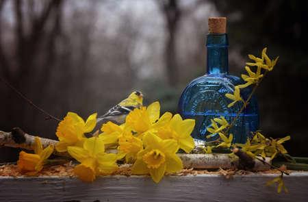 Celebrating spring 版權商用圖片