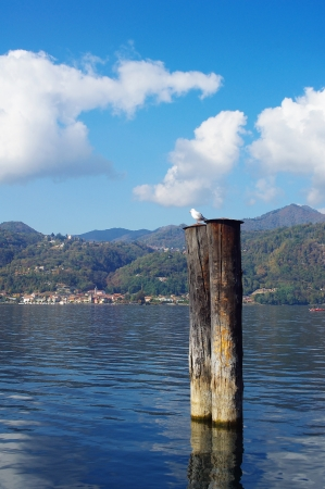 Stakes for tying boats of town Orta San Giulio  on Orta lake, Italy photo