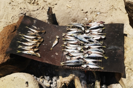 griller: Grilled fish on the beach in Summer