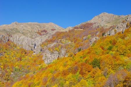 goldy: Cascata Babsko Praskalo e picchi in autunno, montagna di Stara Planina, Bulgaria
