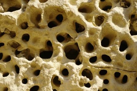 sedimentary: Weathered sandstone with holes near train station Nevsha, Bulgaria