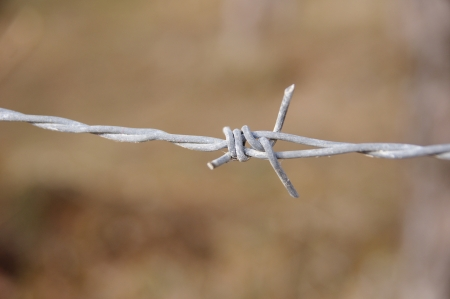 Barbed wire on fence in sunny day Stock Photo - 17696542