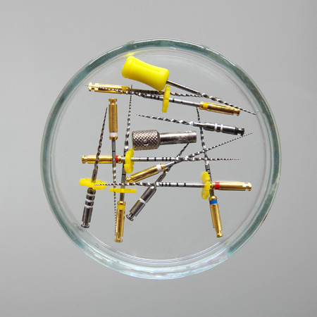 root canal: Endodontic  Equipment: Root Canal Files Protaper in Petri dish glass closeup
