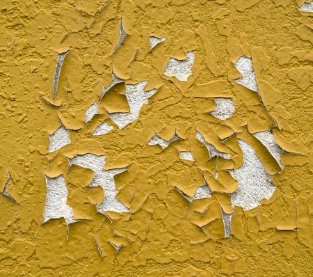crackles: Old orange peeling painted wall closeup