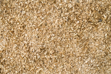 scobs: Heap of wooden sawdust closeup in sunny day Stock Photo