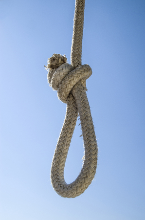 gallow: White rope gibbet closeup in sunny day