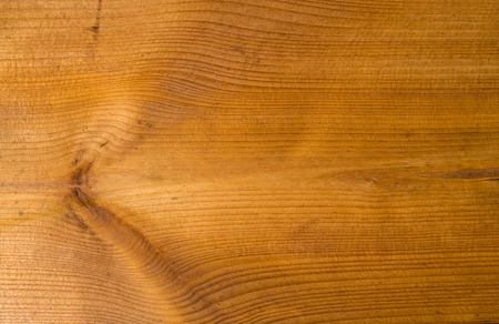 lacquered: New brown lacquered board with knot  closeup