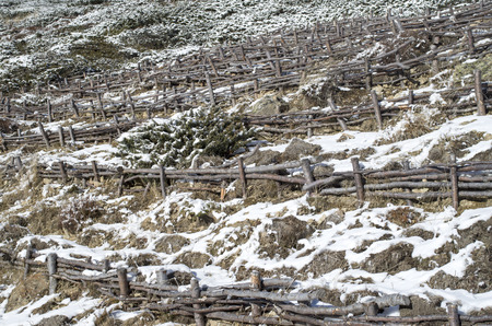 strengthen: Wooden hedge to strengthen the slope on hill, Bulgaria , Europe Stock Photo