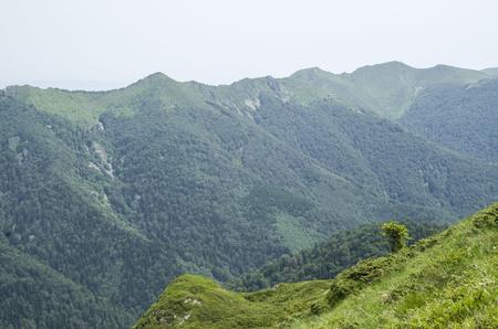Central ridge of Stara Planina and hut Goat Wall , Bulgaria, Europe