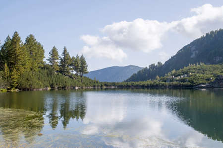 Mountain lake surrounded by pines and dwarfs and their reflections in the water