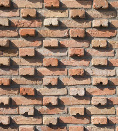 New colorful decorative bricks wall  closeup in sunny day