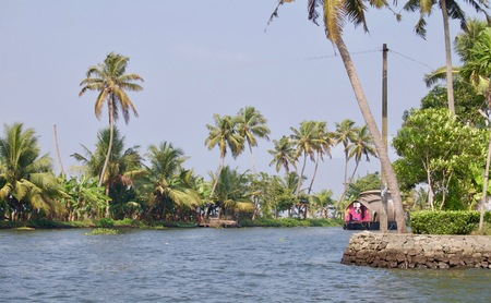 Beautiful & scenic backwaters in rural Kerala (India) with tropical palm trees, untouched nature, aquatic plants & a waterway leading to Kochi & Alleppey on a sunny summer day with a clear blue sky