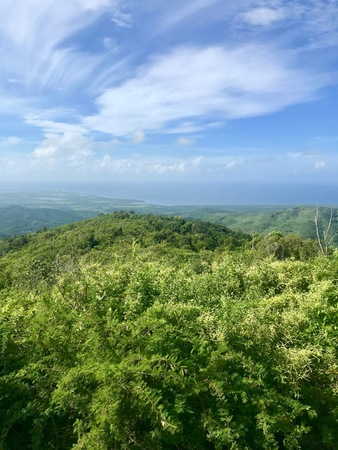 Mirador Lookout Point Panoramic View in Trinidad (Sancti Spiritus) in the Cuban Countryside (Caribbean Island) with an untouched lush green vegetation and a blue summer sky with white clouds Imagens