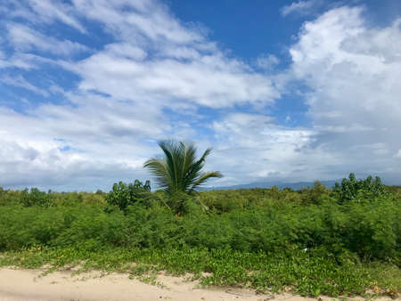 Dreamlike scenery of the Caribbean sea at Playa Ancon in Cuba: Hidden travel destination with blue sky and a coastline with a white sandy beach