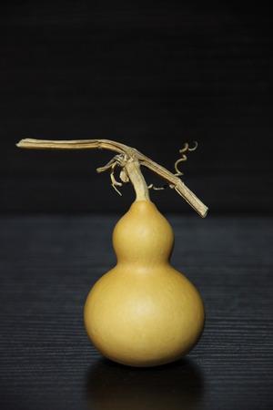 hoists: Gourd