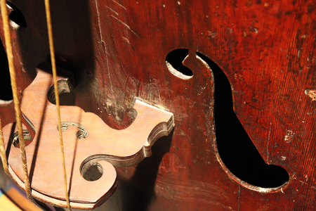 A close up detail of an old cello (also called violoncello) with the F holes, the strings and the bridge Banco de Imagens