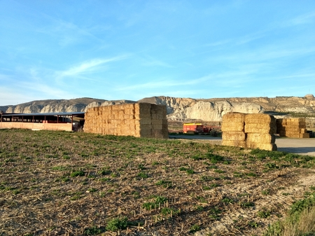 Straw bales next to an agricultural warehouse and a plowed field, with low scarp on the background in the rural Galacho del Juslibol, Zaragoza, Spain