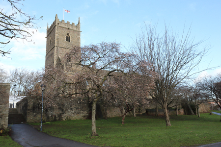 The abandoned rumbled Saint Peter's Church with its bell tower in the Castle Park, with trees during winter, in Bristol, United Kingdom