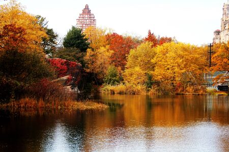 Trees and lake during autumn in Central Park, New York City 写真素材