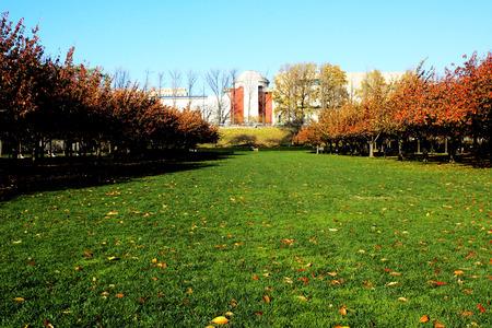 Autumn in Brooklyn Botanic Garden