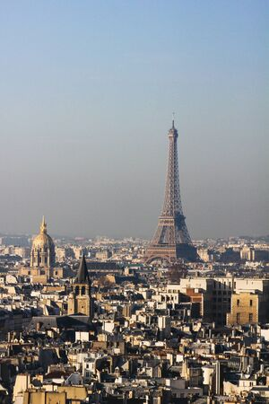 View from the towers of the Notre Dame Cathedral in Paris, France