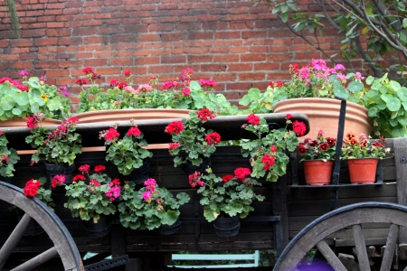 Old carriage with flowers photo