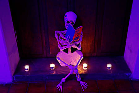 A skull sitting reading a book, photos of skull with candles on the day of the dead