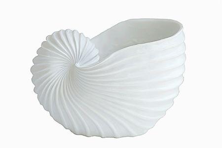 plainness: White shell vase