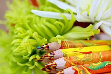 Colored pencils in flowers close up Stock Photo - 3041361