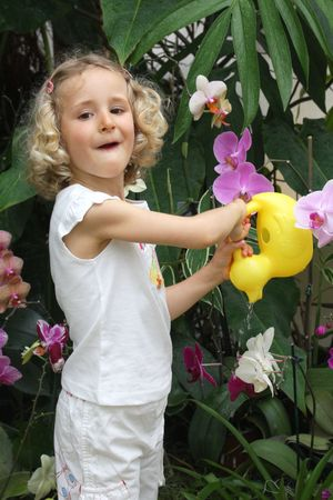 Little girl watering orchids photo