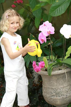 Young  girl watering orchids in vase photo