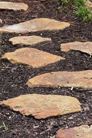 stepping: Path of stepping stones