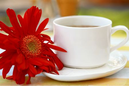coffeebreak: Cup of coffee with red gerbera