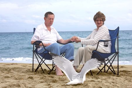 Romantic mature couple looking at seagull photo