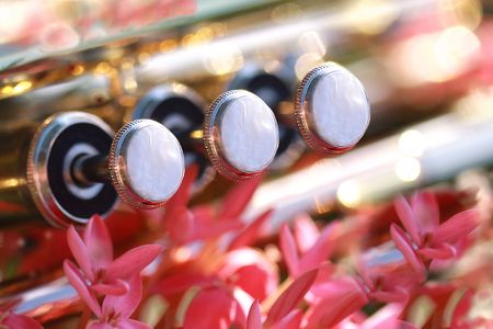 Pearl valves of a trumpet Stock Photo