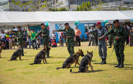 Bangkok, Thailand - January 13, 2018: German Shepherd obedience training in Thai Army base open to public in Childrens Day 2018
