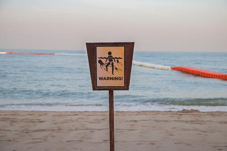 Jellyfish sting warning sign the danger zone at beach Stock fotó