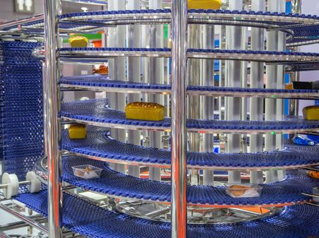 Food on automatic conveyor belt in food industry