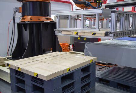 Robot arm loading carton on conveyor in manufacturing production line Stok Fotoğraf