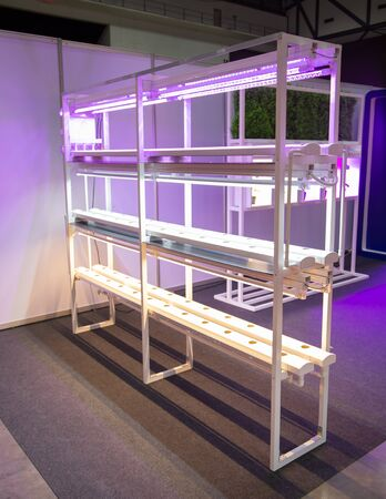 Vertical agriculture with artificial LED lighting for indoor vertical agriculture Stok Fotoğraf