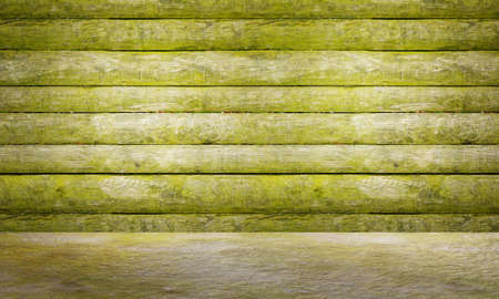 Green mossy wooden panel and floor. Old grungy wooden plank wall texture background