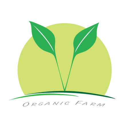 Organic farming business template  . Agriculture company symbol. Vector illustration branding design.