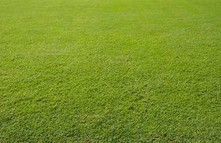 carpet clean: football grass field Stock Photo
