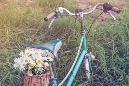 fashion art: green retro bicycle with basket and white flowers on grass with Soft Focus Color Filtered background Stock Photo
