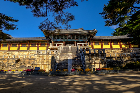 Bulguksa temple under the shade ,Gyeongju,South Korea