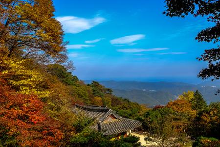 Autumn in seokguram grotto ,Gyeongju,South Korea