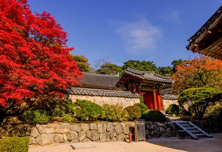 Colorful autumn foliage at Bulguksa Buddhist temple, Gyeongju, South Korea