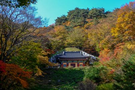 Autumn colors surround Seokguram Grotto containing a Buddha image, Gyeongju, South Korea