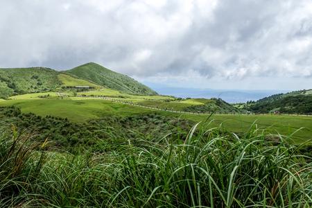 Qingtiangang Grassland, Yangmingshan National Park. Taipei City, Taiwan Фото со стока